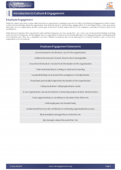 example-culture-engagement-report_Page_04