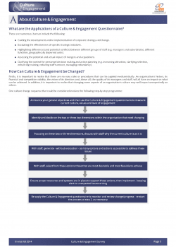 example-culture-engagement-report_Page_06