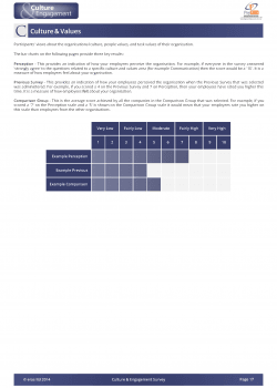 example-culture-engagement-report_Page_10